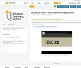 DLC ELA5: Unit 4 - Noun and Pronoun Agreement