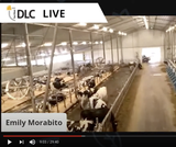 Rayner Dairy Barn Virtual Field Trip
