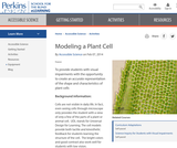 Modeling a Plant Cell