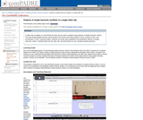 Analysis of Simple Harmonic Oscillator in a Single Video Clip
