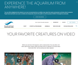 Animal Videos - Seattle Aquarium