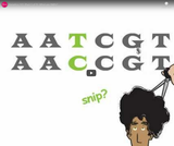 Genetics 101 (Part 2 of 5): What are SNPs?